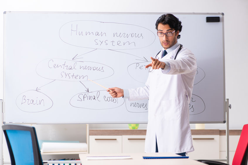 Young male doctor neurologist in front of whiteboard